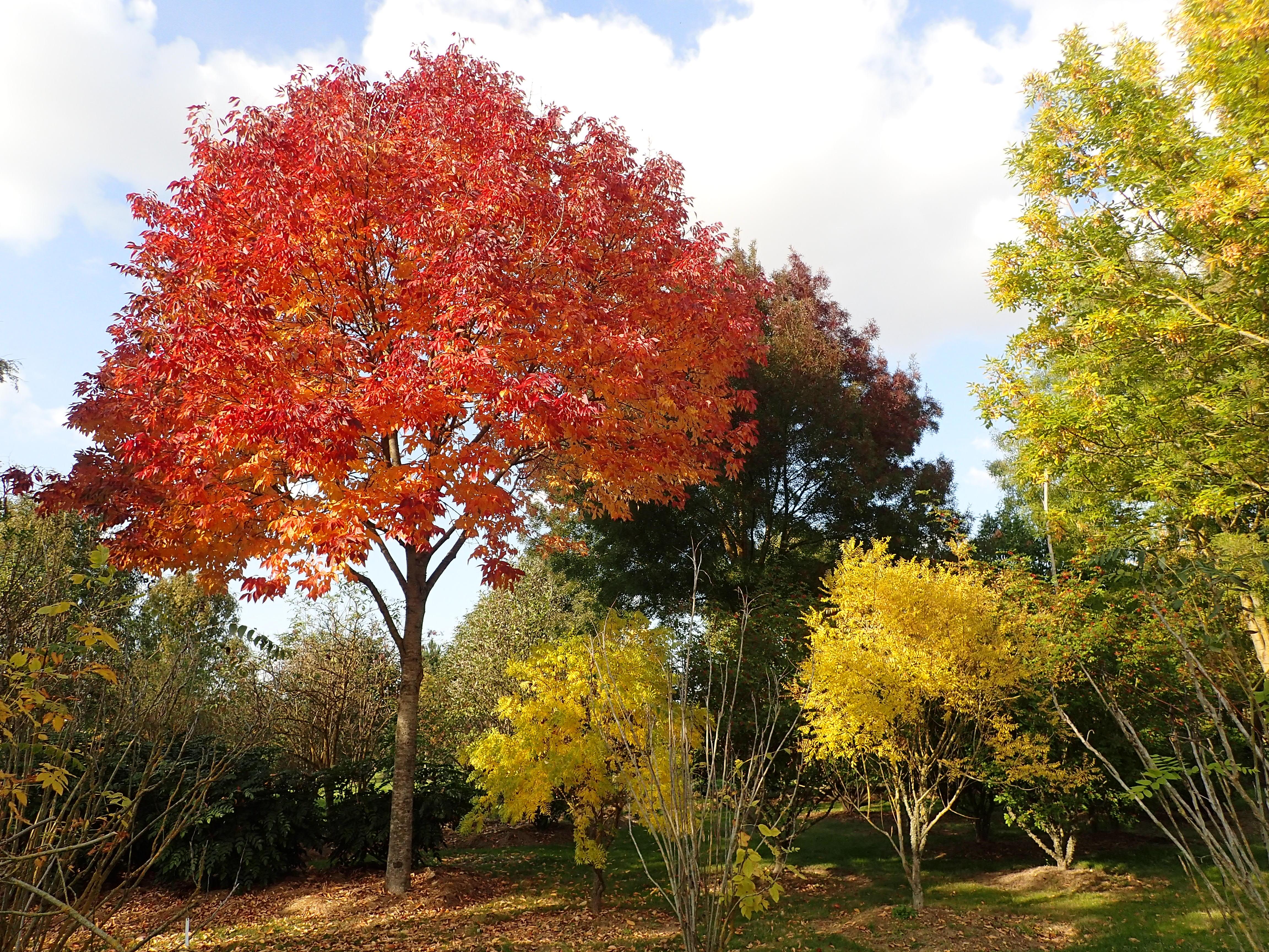 Jardins Et Parcs  Visiter Dans Le Loiret Tourisme Loiret