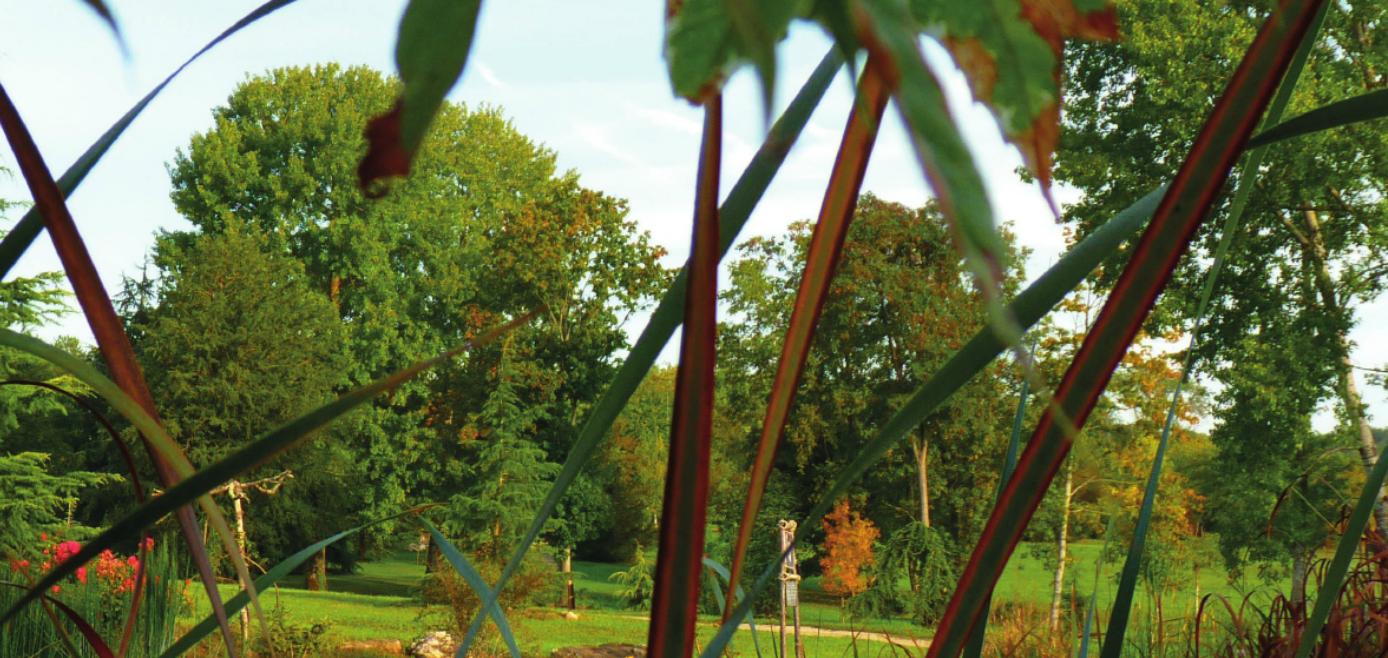 Le bulletin du mois de septembre 2016 parcs et jardins for Jardin neurodon 2015