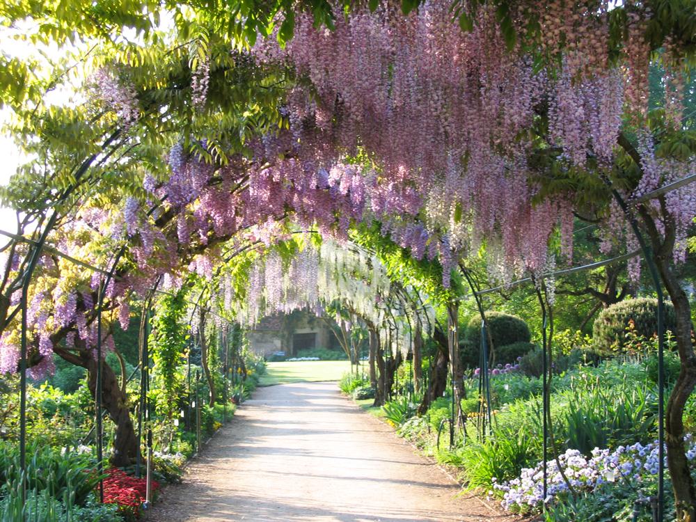 Parc floral d 39 apremont parcs et jardins en r gion centre for Jardins de france a visiter