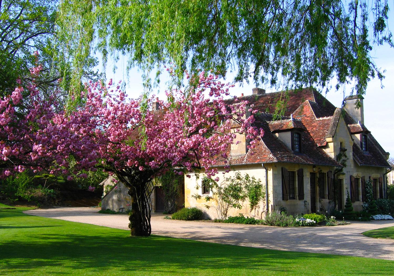 Parc floral d 39 apremont parcs et jardins en r gion centre for Apremont sur allier jardin