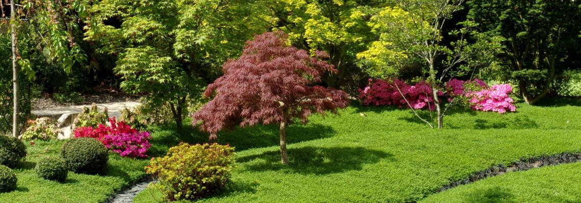 echanges culturels au jardin botanique de tours - Jardin Botanique De Tours