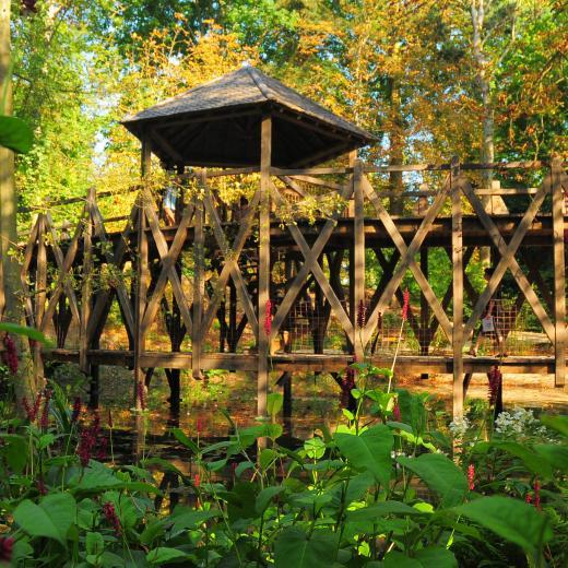 Ch teau du clos luc parc leonardo da vinci jardin de - Pont leonard de vinci ...