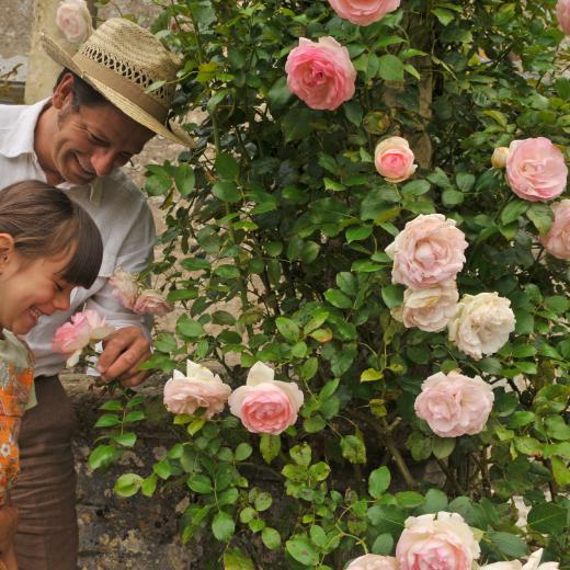 Pour les familles au ch teau de talcy parcs et jardins for Au jardin d enfant