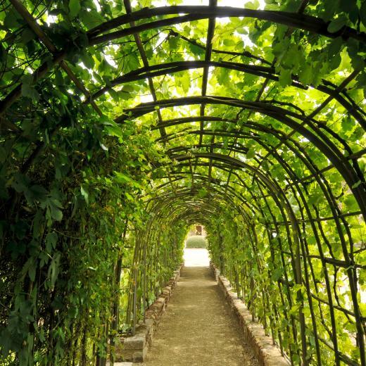 Jardin de bois richeux parcs et jardins en r gion centre for Visite de jardins en france